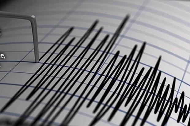 Indonesie : un fort seisme de magnitude 7,3 frappe les Moluques hinh anh 1