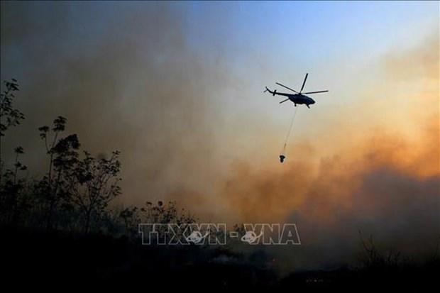 L'Indonesie mobilise des milliers de personnes pour lutter contre les feux de foret hinh anh 1