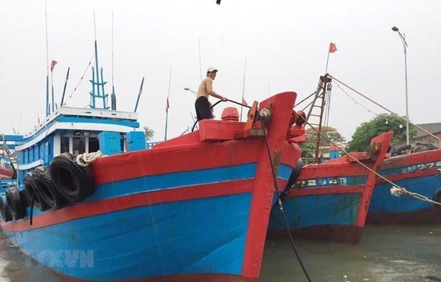 La tempete Wipha devrait toucher la zone maritime de Quang Ninh - Hai Phong hinh anh 1