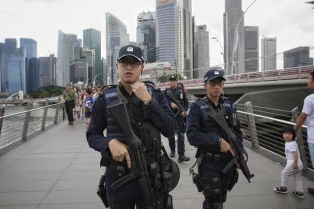 Singapour : renforcement de la securite pour le defile de la Fete nationale hinh anh 1