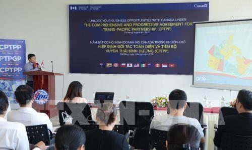 Promotion des opportunites d'affaires entre la ville de Da Nang et le Canada hinh anh 1