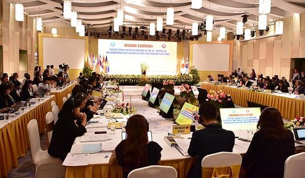 L'ASEAN+3 dynamise la cooperation dans le secteur agro-sylvicole hinh anh 1