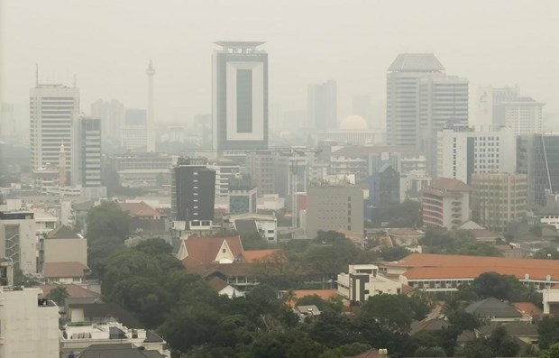 Pollution: la capitale indonesienne ordonne la circulation alternee hinh anh 1