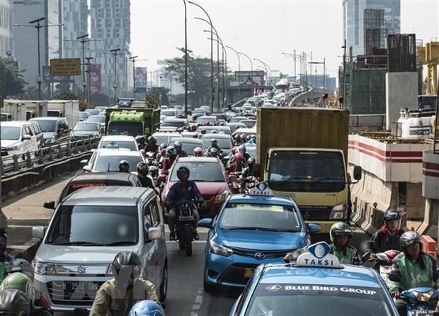 Indonesie: le president propose de transferer la capitale a Borneo hinh anh 1