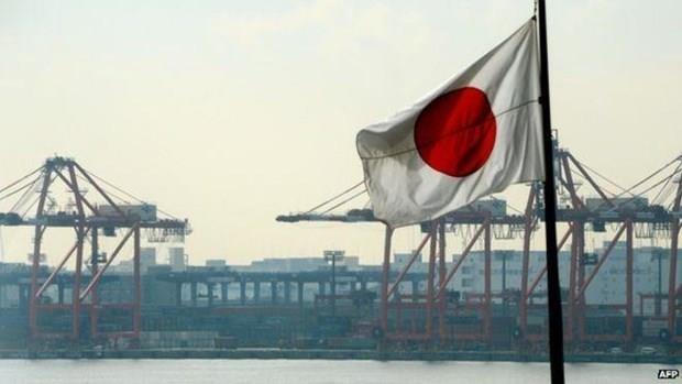 Le Vietnam participe a une conference sur l'Afrique au Japon hinh anh 1