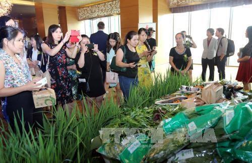 Promouvoir la connexion commerciale entre le Vietnam et la Russie hinh anh 1