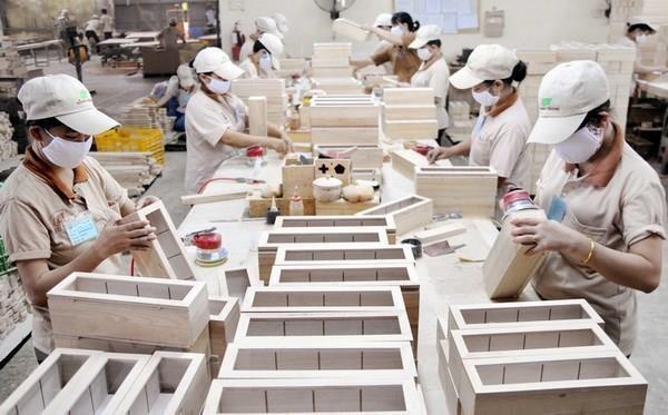 Renforcer la responsabilite d'explication et la verification juridique dans les importations de bois hinh anh 1