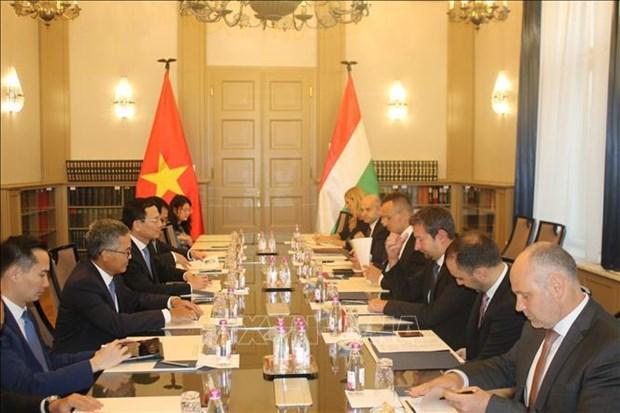 Le Vietnam et la Hongrie boostent leur cooperation dans les domaines de la TIC hinh anh 1