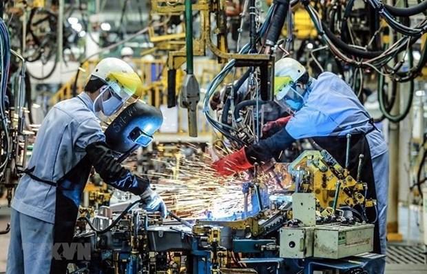 Croissance du Vietnam en 2019 : les previsions revues a la hausse hinh anh 1