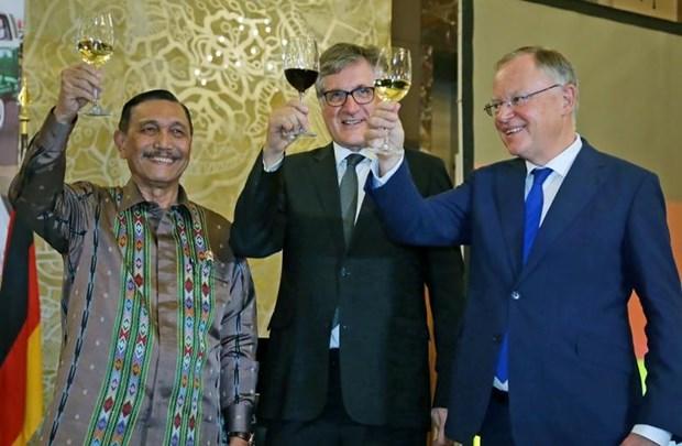 L'Indonesie et l'Allemagne coopereront dans la production de vehicules electriques hinh anh 1