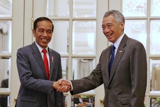Singapour et l'Indonesie atteignent un cadre sur l'espace aerien et l'entrainement militaire hinh anh 1