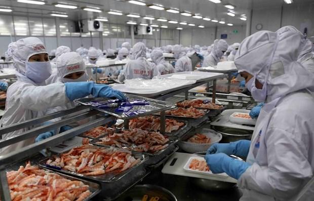 Signes positifs pour l'exportation des produits vietnamiens vers la Chine hinh anh 1