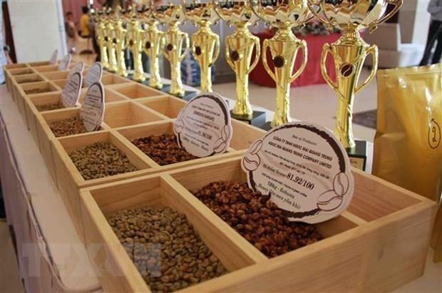 Vietnam – Chine: opportunites de cooperation dans la production et la consommation de the et cafe hinh anh 1