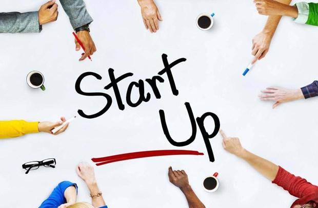 Les startups vietnamiennes dans leur periode la plus florissante hinh anh 1