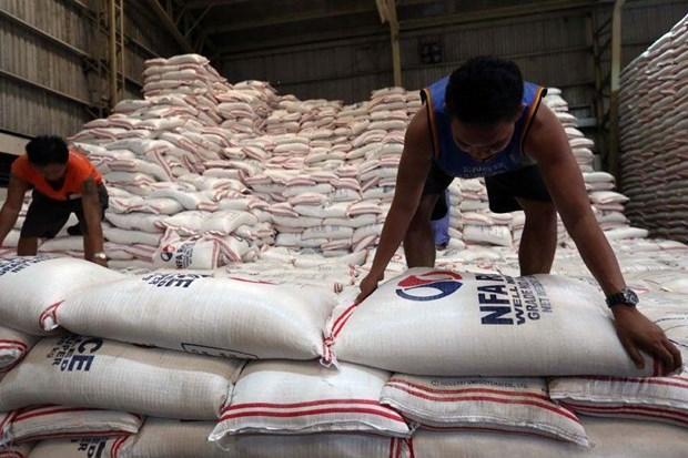 Les Philippines baisseront les importations du riz en 2020 hinh anh 1