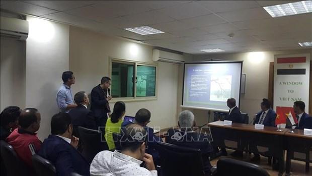 Promouvoir la cooperation dans les domaines potentiels entre le Vietnam et l'Egypte hinh anh 1