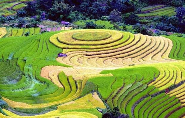Le Vietnam, destination impressionnante au Salon international du tourisme voyages a Montreal hinh anh 1
