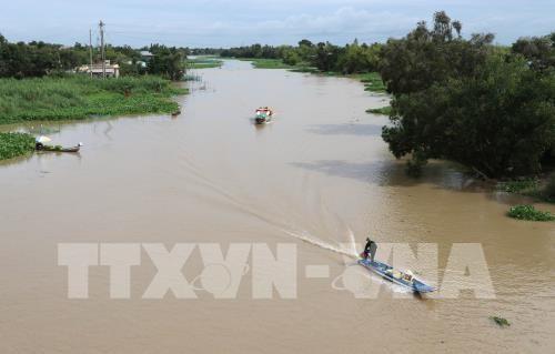 Mekong Caravane traversera huit localites du delta du Mekong hinh anh 1