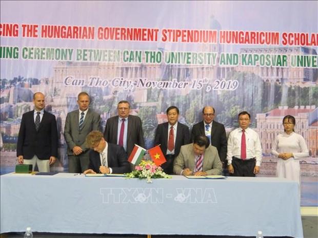 Can Tho et l'Hongrie promeuvent leur cooperation dans l'education hinh anh 1