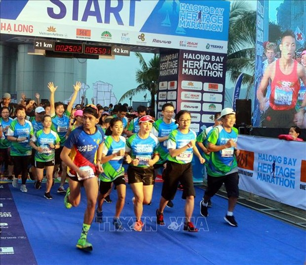 Plus de 3.000 coureurs participent au HalongBay International Heritage Marathon hinh anh 1