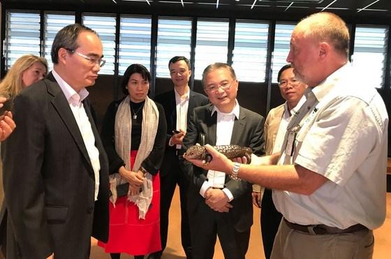 Dynamiser les relations entre Ho Chi Minh-Ville et l'Australie hinh anh 1