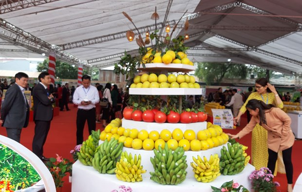 Ouverture du premier Festival de produits agricoles et de villages de metiers de Hanoi hinh anh 1