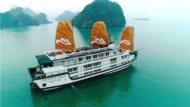 Lancement des bateaux de croisiere Paradise Sails sur la baie d'Ha Long hinh anh 1