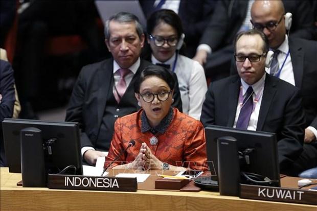 L'Indonesie affirme que sa souverainete n'est pas negociable hinh anh 1