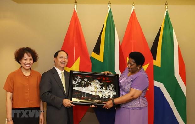 L'Afrique du Sud considere le Vietnam comme l'un des principaux partenaires en Asie du Sud-Est hinh anh 1