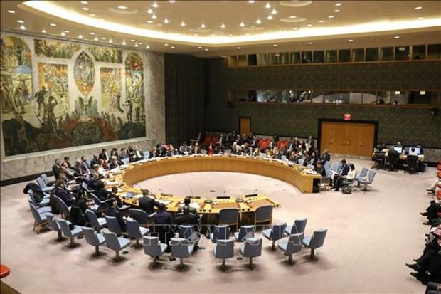 Renforcement de la cooperation ONU-ASEAN dans le maintien de la paix hinh anh 1