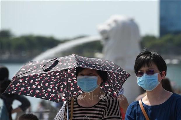 Singapour emet une alerte jaune pour une epidemie de coronavirus hinh anh 1