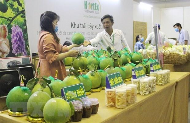 Fruits et legumes : ouverture de l'exposition internationale HortEx Vietnam 2020 hinh anh 1