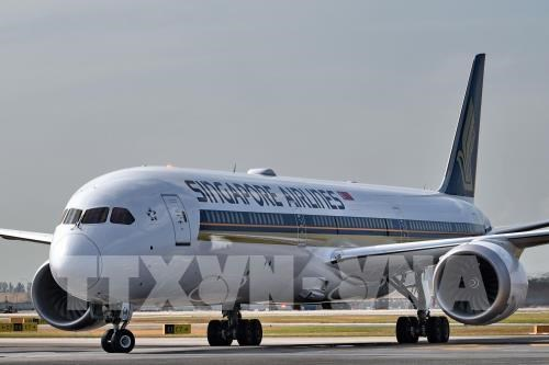 Singapore Airlines suspend les embauches en raison de l'impact du COVID-19 hinh anh 1