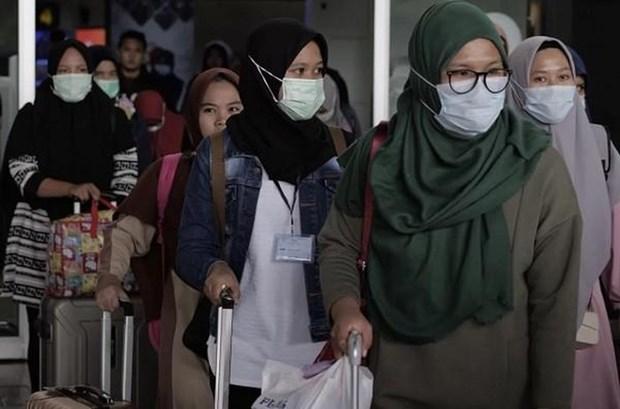 Indonesie : le taux d'occupation des hotels en forte baisse en raison du COVID-19 hinh anh 1