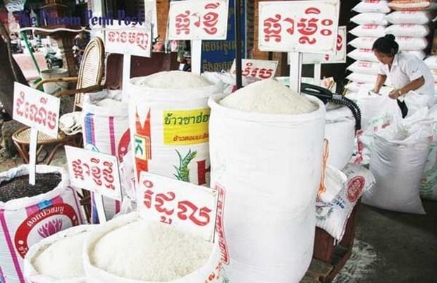 Cambodge: l'offre et le prix du riz sont stables malgre de l'epidemie de COVID-19 hinh anh 1
