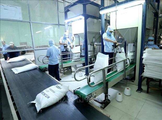 Le Vietnam suspend ses exportations de riz pour garantir la securite alimentaire face a COVID-19 hinh anh 1