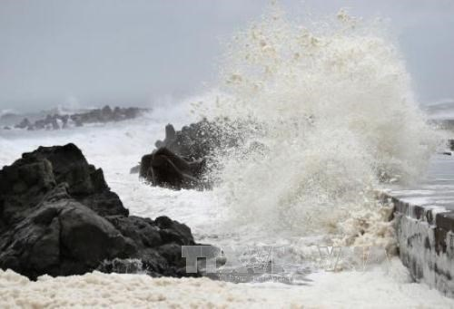 Environ cinq ou six tempetes frapperont le Vietnam continental en 2020 hinh anh 1