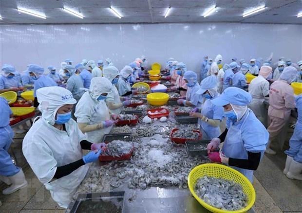 Les exportations de crevettes devraient atteindre 3,8 milliards de dollars en 2020 hinh anh 1