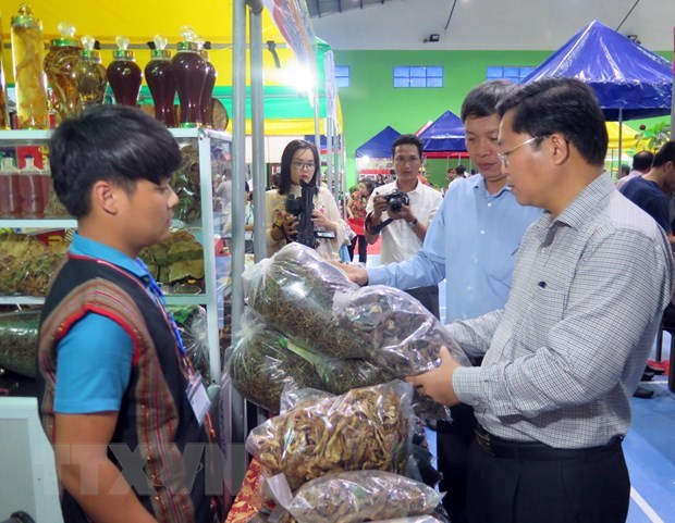 La 32e foire du ginseng de Ngoc Linh attire la foule hinh anh 1