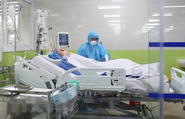 Coronavirus : aucun nouveau cas local au Vietnam en 50 jours hinh anh 1