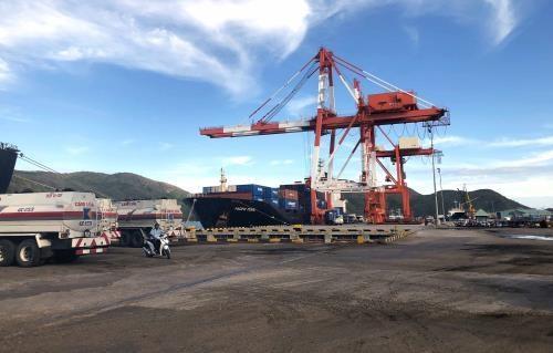 Le transport de marchandises via le port maritime de Quy Nhon en hausse de 12% en cinq mois hinh anh 1