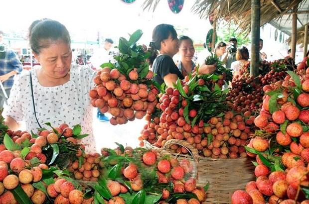 Les exportations de fruits et legumes atteignent plus 1,5 milliard de dollars en six mois hinh anh 1
