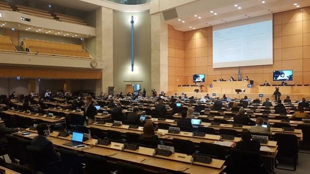 Le Vietnam participe a la 43e session du Conseil des droits de l'homme des Nations Unies hinh anh 1