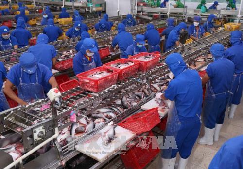 Le Vietnam et la Nouvelle-Zelande intensifient leur cooperation etroite dans divers domaines hinh anh 1