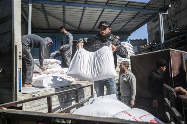 Le Vietnam s'engage a octroyer 50.000 dollars aux activites d'assistance aux refugies palestiniens hinh anh 1