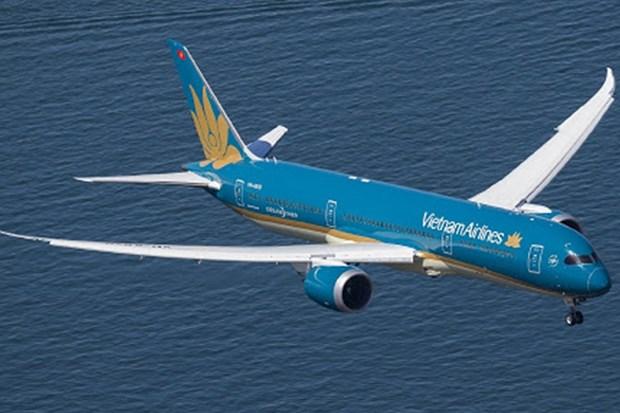 Regler les difficultes de l'industrie de l'aviation civile du Vietnam hinh anh 1