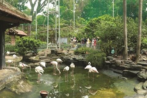 COVID-19 : Ho Chi Minh-Ville protege le zoo et le jardin botanique hinh anh 1