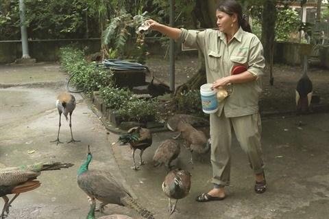 COVID-19 : Ho Chi Minh-Ville protege le zoo et le jardin botanique hinh anh 2