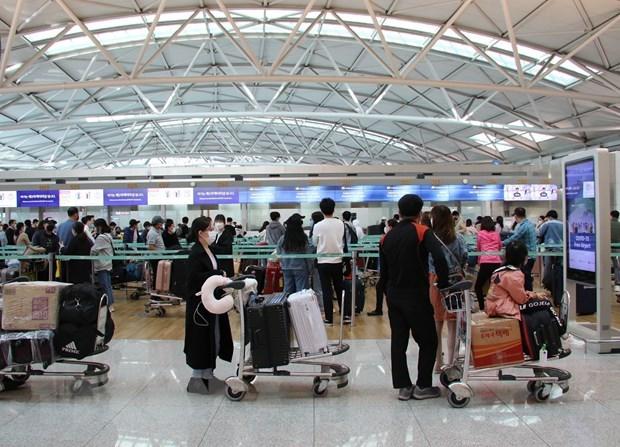 COVID-19 : environ 380 citoyens vietnamiens rapatries de R. de Coree hinh anh 1