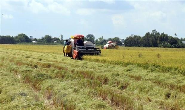 Le PM accepte la conversion des terres agricoles a Vinh Long et Kien Giang hinh anh 1